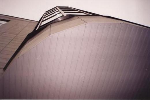 Реечный потолок из пищевого алюминия  в ванной