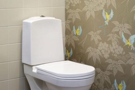 Финишное покрытие стен в туалете моющимися обоями
