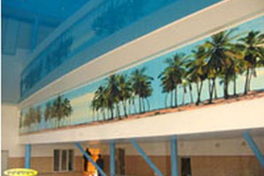 Потолок от «Сарос Дизайн» в бассейне «Олимпийский»