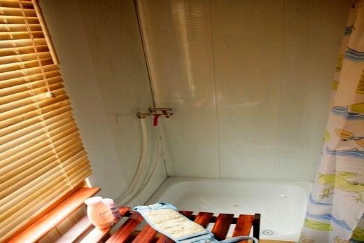 В деревянной сауне душевая кабинка с стальным поддоном