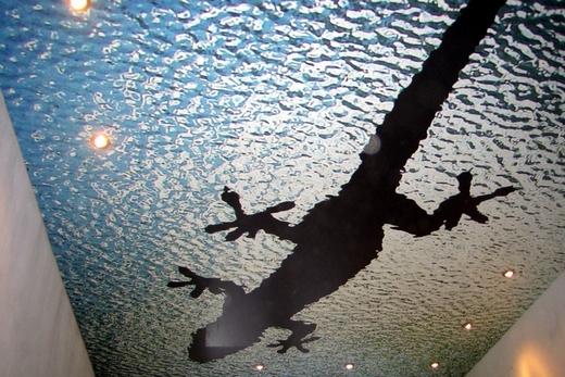 Наятжной потолок с рисунком, полученном методом фотопечати