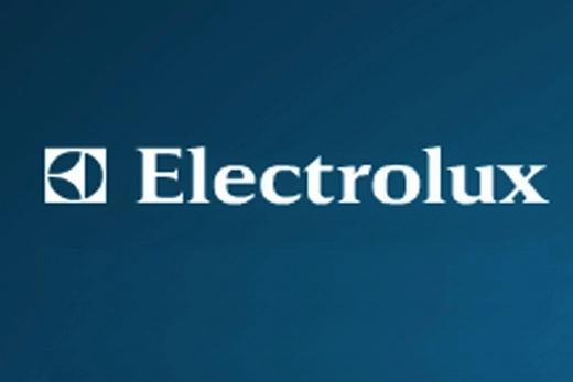 Логотип фирмы Electrolux