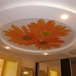 С фотопечатью потолок «фотография» многоуровневый