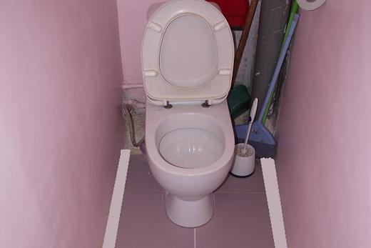 Водостойкая краска в туалете