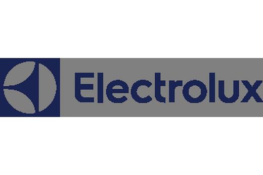 "Логотип шведской компании ""Электролюкс"""