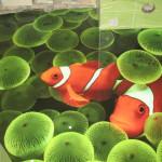 3D-наливные полы