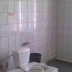 Отделка стен туалета керамикой