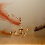 Превращение потолка в большой аквариум – еще один часто повторяющийся приём