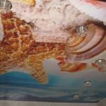 Фотографии морской живности словно перенесут вас вместе с гостями в царство Посейдона
