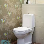 Облицовка стен в туалетной комнате