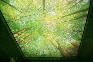 Лен на потолке