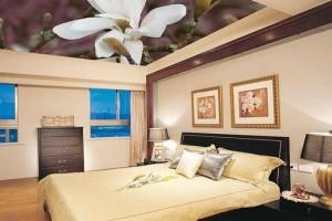 Фотопечать на потолке комбинированного типа в спальней комнате