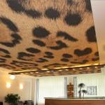 Шкура милой зверушки дома на потолке