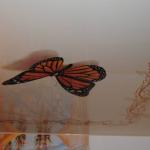 Бабочка на потолке: объемное изображение